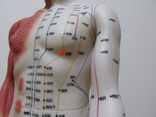胃経 乳根